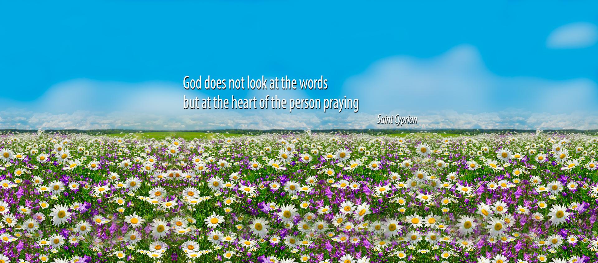 Dio Guarda